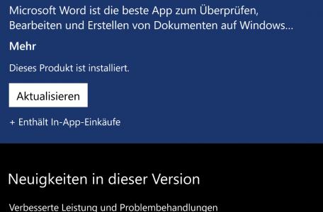 Word_Update_WPVision.de